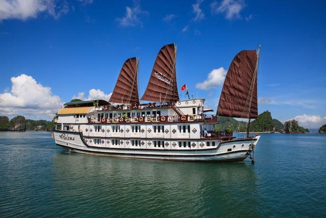 Paloma Cruise factsheet